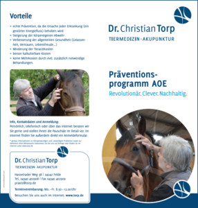 Download Flyer Präventionsprogramm